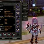 Dragon Nest Ray Mechanic Main Stat